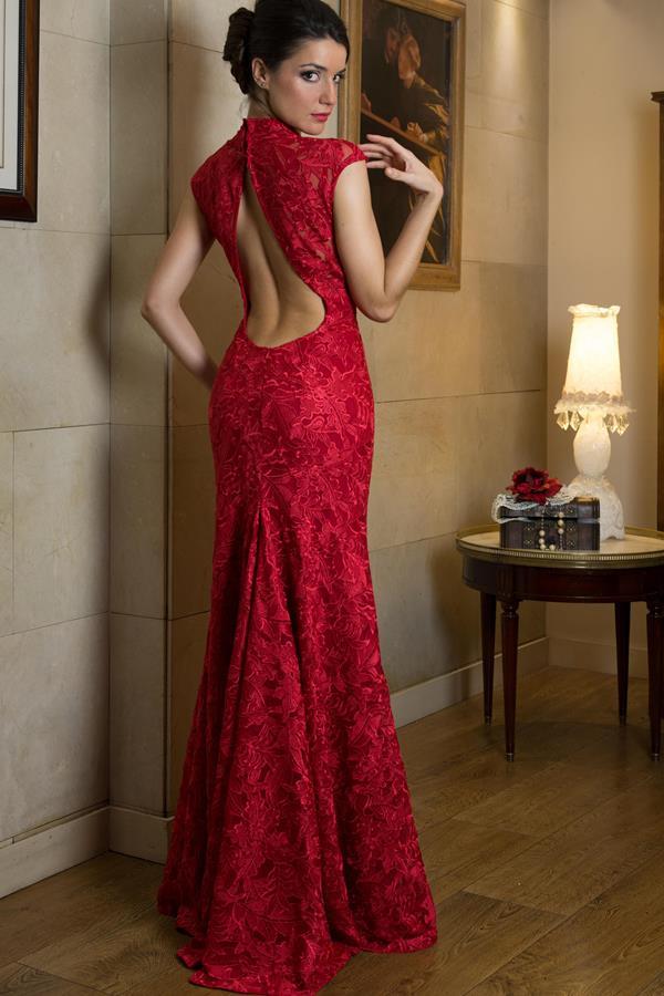 Imagenes de vestidos de noche de gala